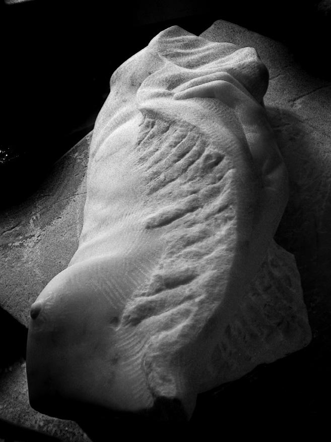 torso-mano marmo bianco di carrara 2010 20x20x45 (2)
